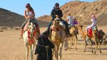 Безопасно ли ехать сегодня в Египет?