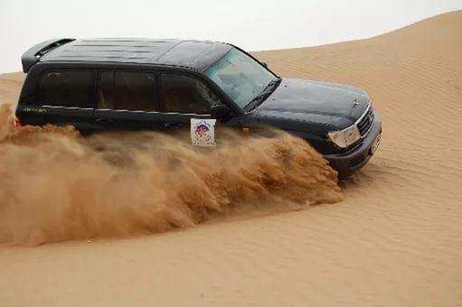 ОАЭ - Дневное сафари