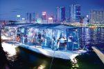 Экскурсии в ОАЭ — Круиз по ночному заливу