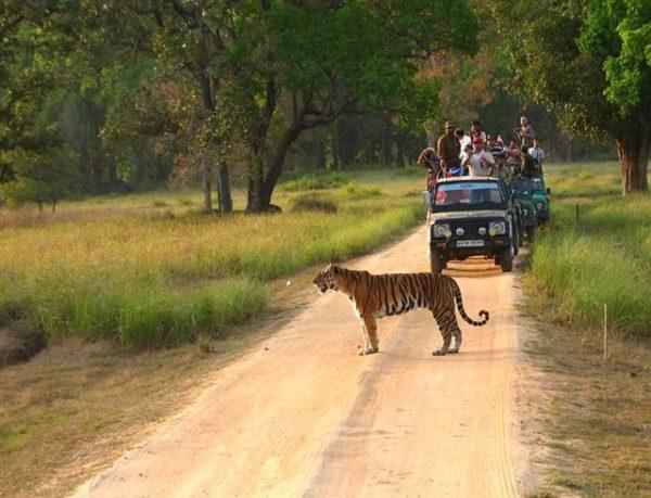 Национальный парк Канха
