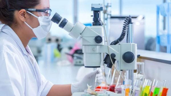 Лаборатории Анапы